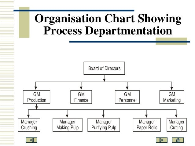 bases of departmentation Start studying ch3 principles of mangt learn vocabulary, terms, and more with  organization that uses two or more different bases of departmentation,.