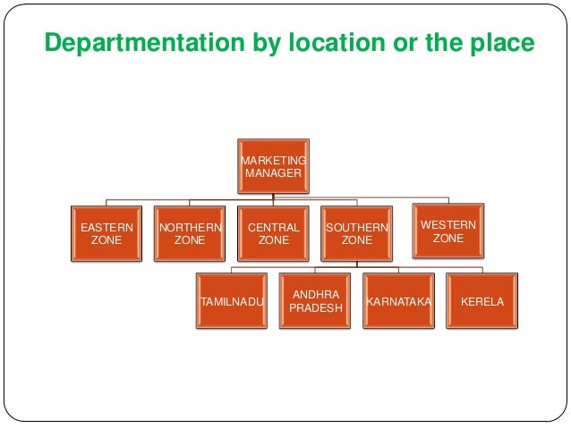 departmentation management and example Management and organizations,  for example, specialists so a  as you think about adapting your formal team structure in terms of departmentation.