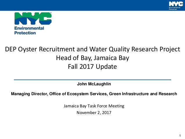 1 DEP Oyster Recruitment and Water Quality Research Project Head of Bay, Jamaica Bay Fall 2017 Update John McLaughlin Mana...