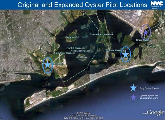 Dep head of bay oyster project jam bay task force fall 2017 update Slide 3