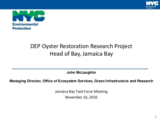1 DEP Oyster Restoration Research Project Head of Bay, Jamaica Bay John McLaughlin Managing Director, Office of Ecosystem ...