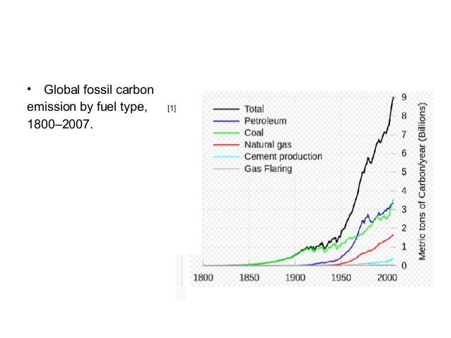 World Environmental Problems: Vocabulary Exercise