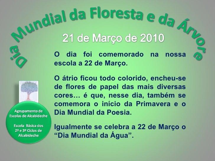 Dia Mundial Da árvore E Da Floresta