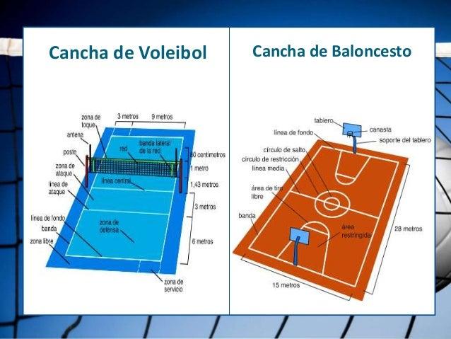 Diferencias Entre El Voleibol Y El Balonces