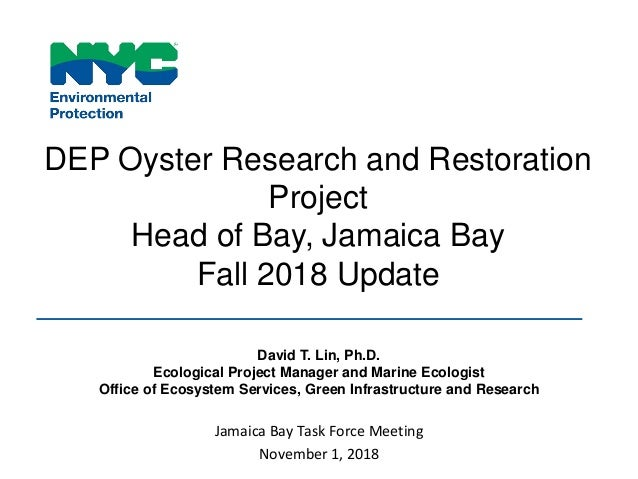 DEP Oyster Research and Restoration Project Head of Bay, Jamaica Bay Fall 2018 Update David T. Lin, Ph.D. Ecological Proje...