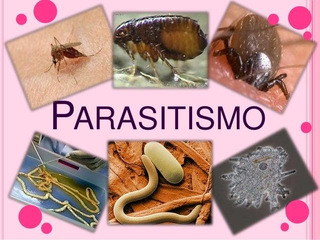 Depredación y parasitismo