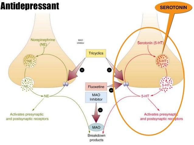 anti inflammatory steroids