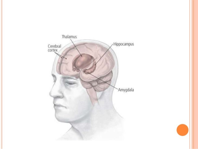 SEROTONIN  Imbalance in Serotonin can influence mood and emotions  Problems in the brain with low levels of Serotonin: t...