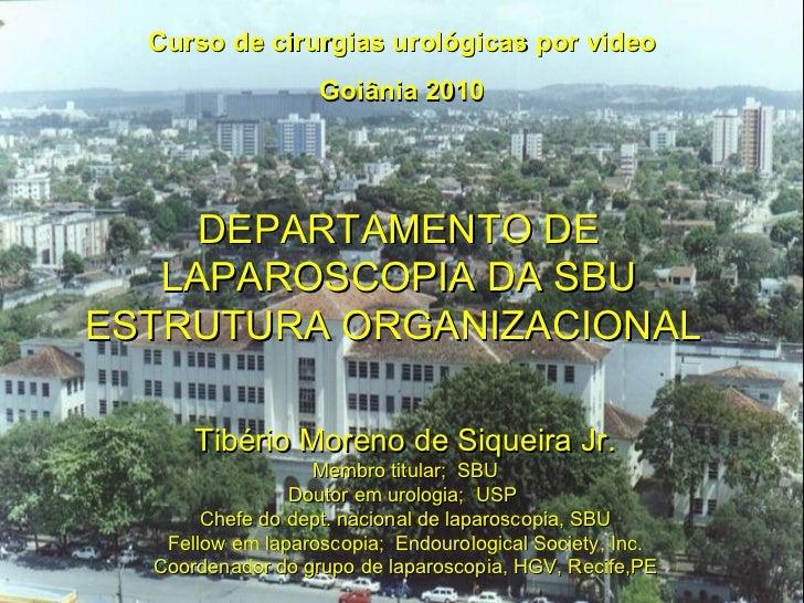 Curso de cirurgias urológicas por video Goiânia 2010 DEPARTAMENTO DE LAPAROSCOPIA DA SBU ESTRUTURA ORGANIZACIONAL  Tibério...