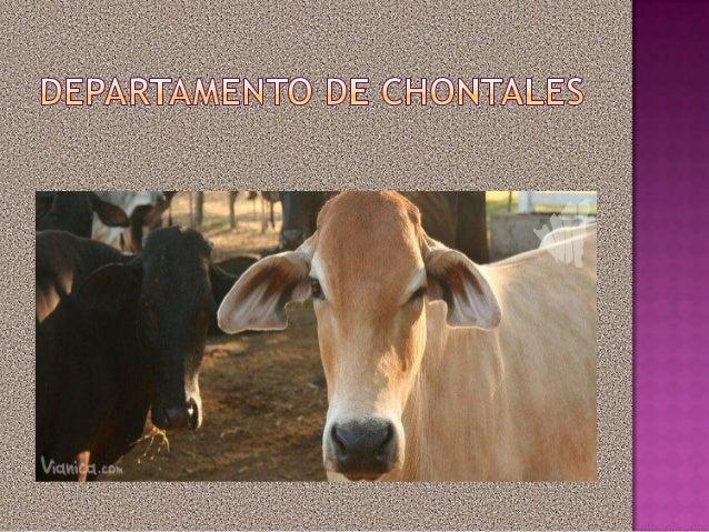 El      departamento          deChontales se deriva delvocablo indígena náhuatlchontalli,     que     significapueblo     ...