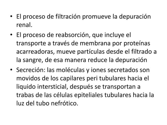• El proceso de filtración promueve la depuraciónrenal.• El proceso de reabsorción, que incluye eltransporte a través de m...