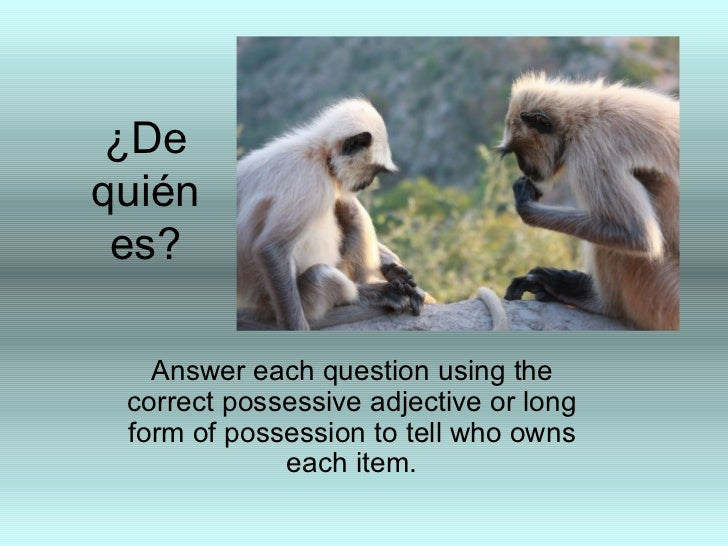 ¿Dequién es?   Answer each question using the correct possessive adjective or long form of possession to tell who owns    ...