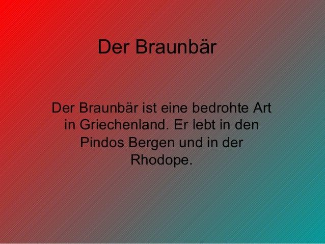 Der Braunbär Der Braunbär ist eine bedrohte Art in Griechenland. Er lebt in den Pindos Bergen und in der Rhodope.