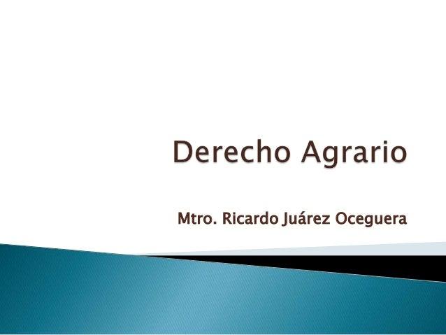 Mtro. Ricardo Juárez Oceguera