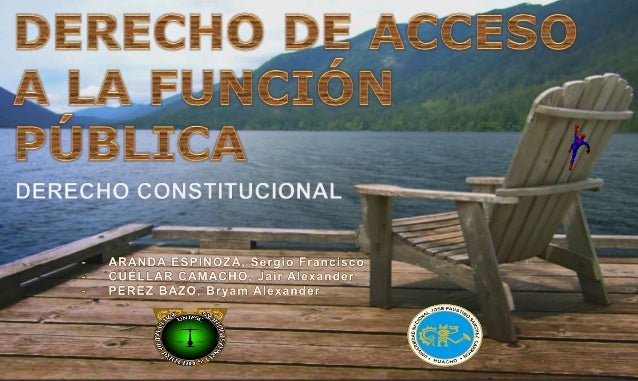 Derecho de acceso a la funcion publica