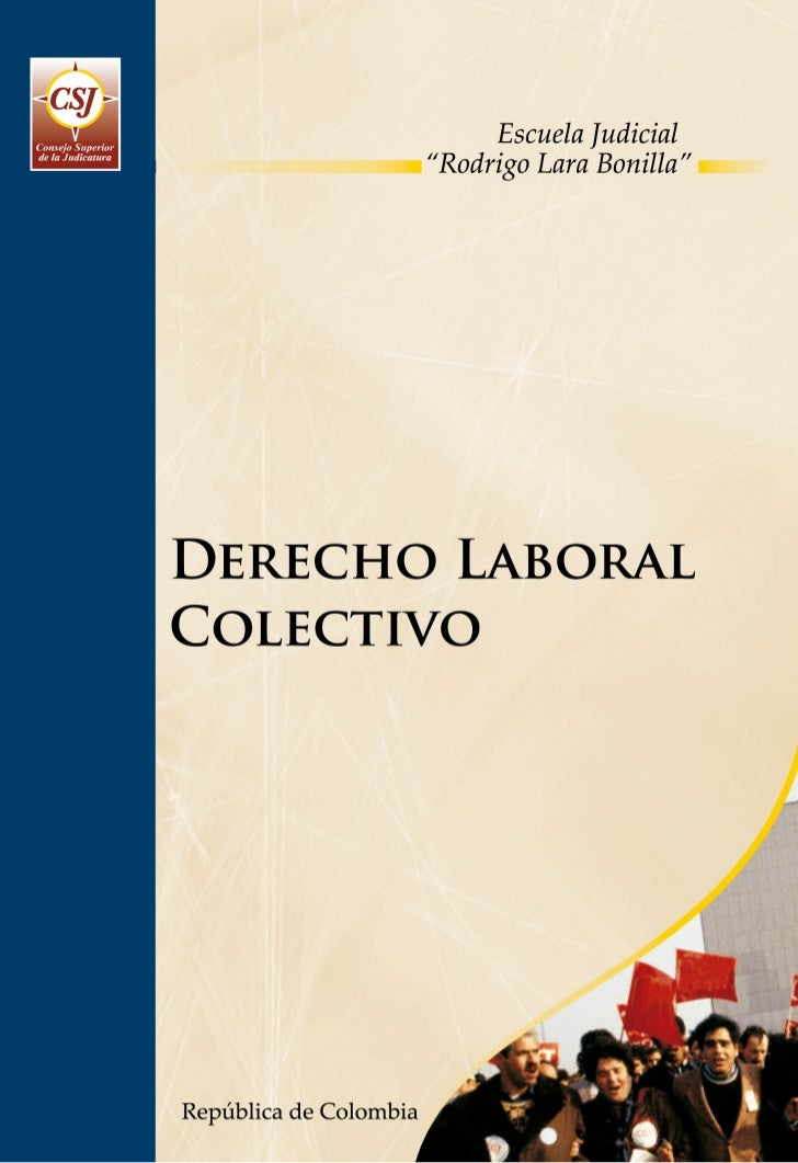 PROGRAMA DE FORMACIÓN JUDICIAL ESPECIALIZADA PARA EL ÁREA LABORAL Y DE LA SEGURIDAD SOCIAL         DERECHO LABORAL COLECTIVO