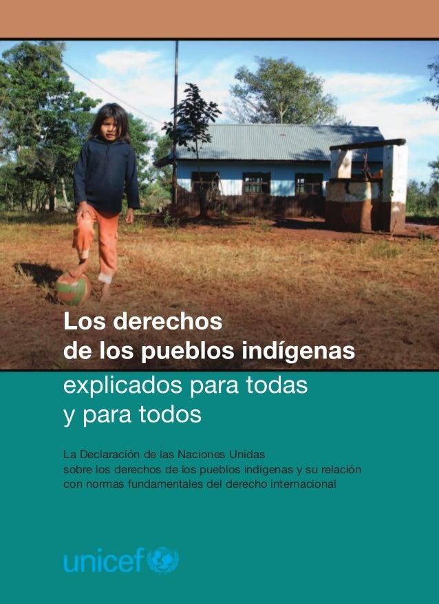 La Declaración de las Naciones Unidas sobre los derechos de los pueblos indígenas y su relación con normas fundamentales d...