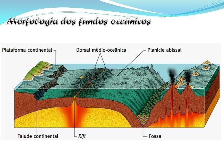 As rochas que constituem a        A crusta oceânica é muito maislitosfera são tanto mais jovens   recente que a crusta con...