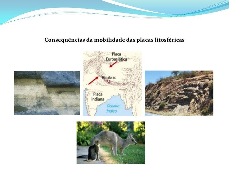 Deriva continental e tectónica de placas
