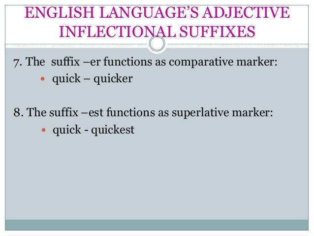 What is Inflection? Definition, Examples of English Inflection