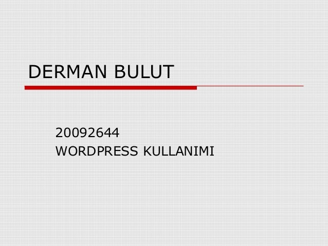 DERMAN BULUT 20092644 WORDPRESS KULLANIMI