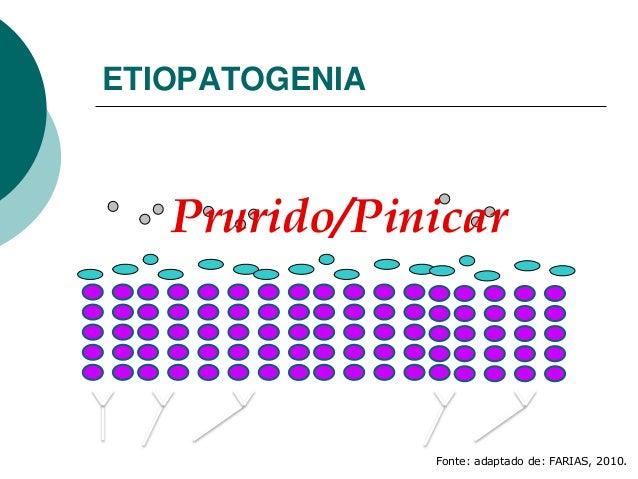 ETIOPATOGENIA Prurido/Pinicar Fonte: adaptado de: FARIAS, 2010.