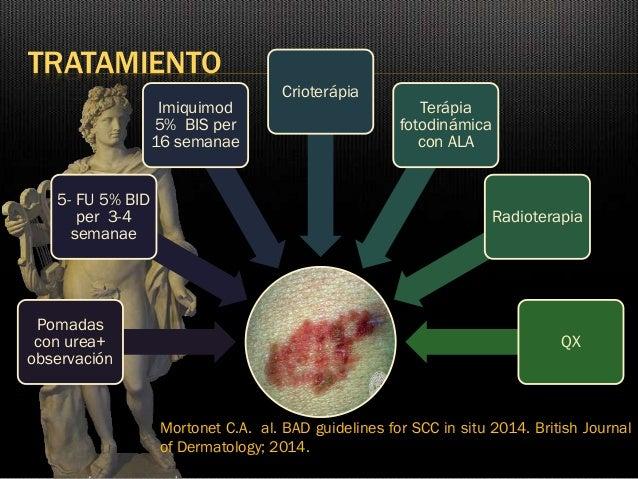 british journal dermatology author guidelines
