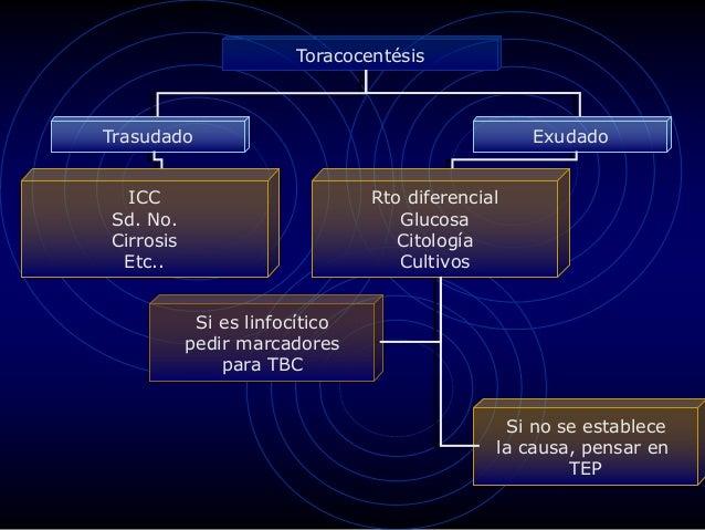 Toracocentésis Trasudado Exudado ICC Sd. No. Cirrosis Etc.. Rto diferencial Glucosa Citología Cultivos Si es linfocítico p...