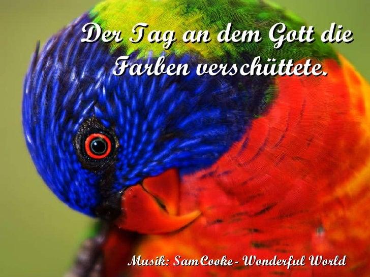 Der Tag an dem Gott die  Farben verschüttete. Musik: Sam   Cooke   - Wonderful World