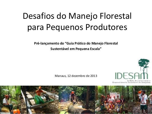 """Desafios do Manejo Florestal para Pequenos Produtores Pré-lançamento do """"Guia Prático do Manejo Florestal Sustentável em P..."""