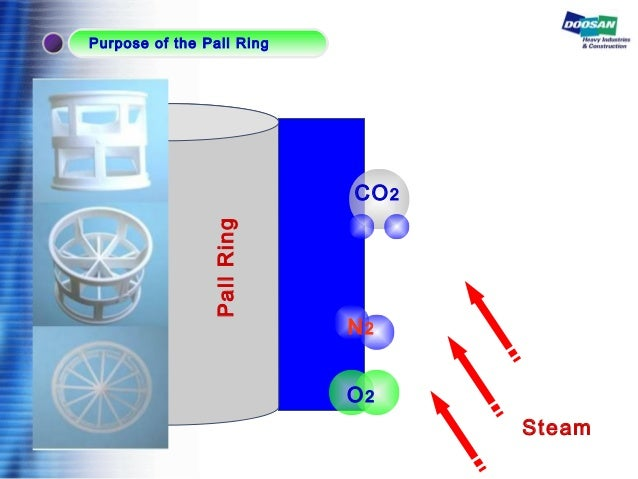 PallRing Steam CO2 O2 N2 Purpose of the Pall Ring