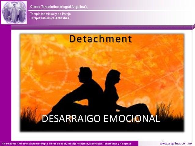 Centro Terapéutico Integral Angelina´s                       Terapia Individual y de Pareja                       Terapia ...