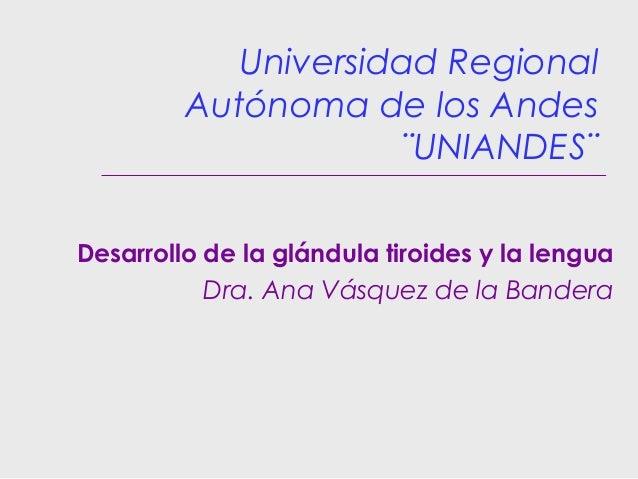 Universidad Regional Autónoma de los Andes ¨UNIANDES¨ Desarrollo de la glándula tiroides y la lengua Dra. Ana Vásquez de l...