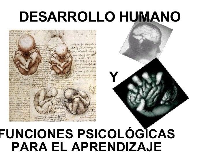 DESARROLLO HUMANO FUNCIONES PSICOL Ó GICAS PARA EL APRENDIZAJE Y