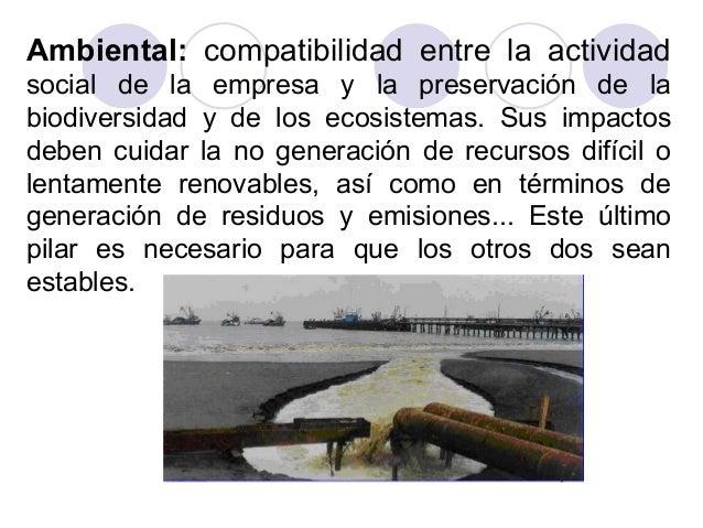 Ambiental: compatibilidad entre la actividad social de la empresa y la preservación de la biodiversidad y de los ecosistem...