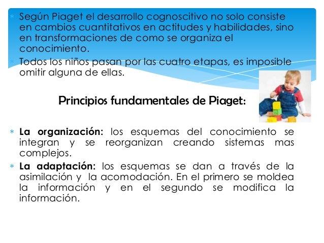 Según Piaget el desarrollo cognoscitivo no solo consiste en cambios cuantitativos en actitudes y habilidades, sino en tran...