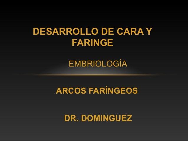 DESARROLLO DE CARA Y      FARINGE      EMBRIOLOGÍA   ARCOS FARÍNGEOS     DR. DOMINGUEZ