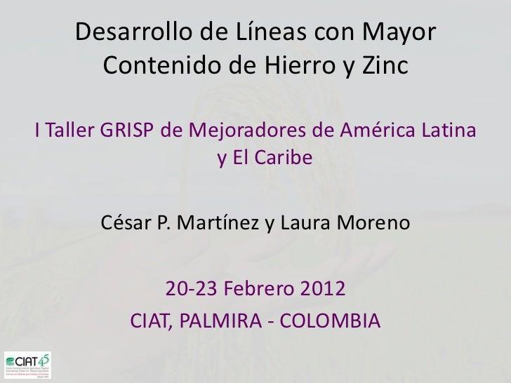 Desarrollo de Líneas con Mayor      Contenido de Hierro y ZincI Taller GRISP de Mejoradores de América Latina             ...