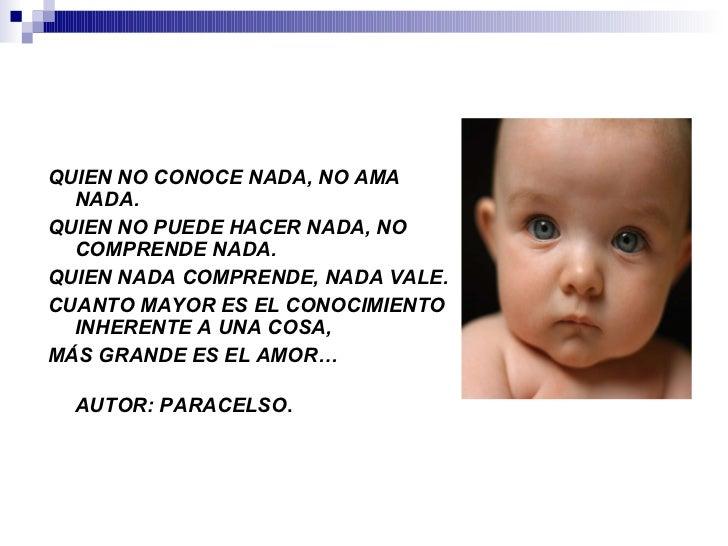 Desarrollo del lenguaje Slide 2