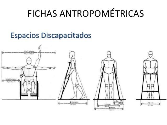 Desarrollo de proyecto arquitectonico 1 for Medidas antropometricas para discapacitados