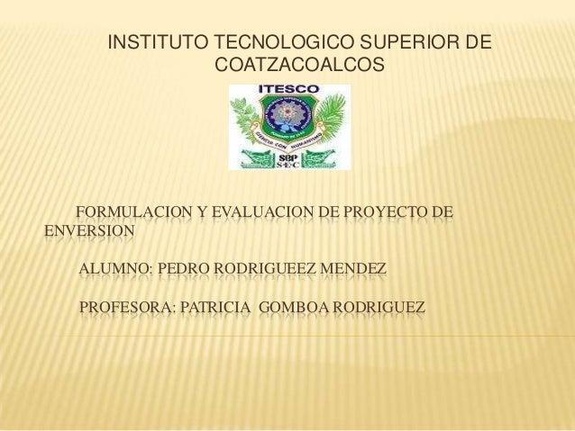 INSTITUTO TECNOLOGICO SUPERIOR DE                COATZACOALCOS   FORMULACION Y EVALUACION DE PROYECTO DEENVERSION   ALUMNO...