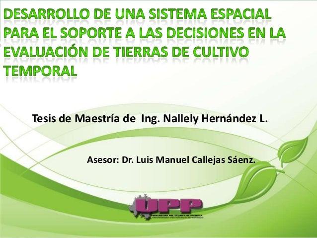 Tesis de Maestría de Ing. Nallely Hernández L.          Asesor: Dr. Luis Manuel Callejas Sáenz.
