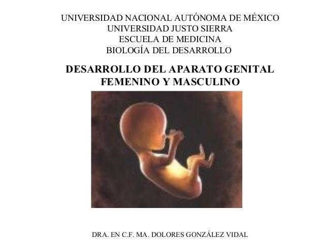 UNIVERSIDAD NACIONAL AUTÓNOMA DE MÉXICO  UNIVERSIDAD JUSTO SIERRA  ESCUELA DE MEDICINA  BIOLOGÍA DEL DESARROLLO  DESARROLL...
