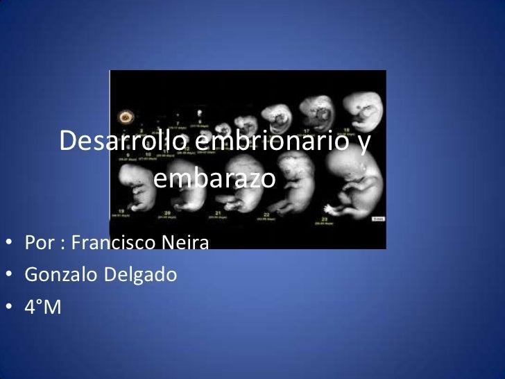Desarrollo embrionario y            embarazo• Por : Francisco Neira• Gonzalo Delgado• 4°M