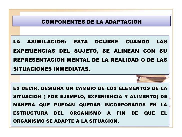COMPONENTES DE LA ADAPTACIONLA   ASIMILACION:    ESTA   OCURRE    CUANDO         LASEXPERIENCIAS DEL SUJETO, SE ALINEAN CO...