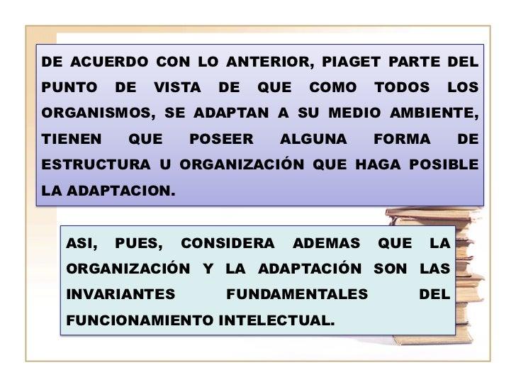 DE ACUERDO CON LO ANTERIOR, PIAGET PARTE DELPUNTO    DE   VISTA   DE   QUE    COMO    TODOS   LOSORGANISMOS, SE ADAPTAN A ...