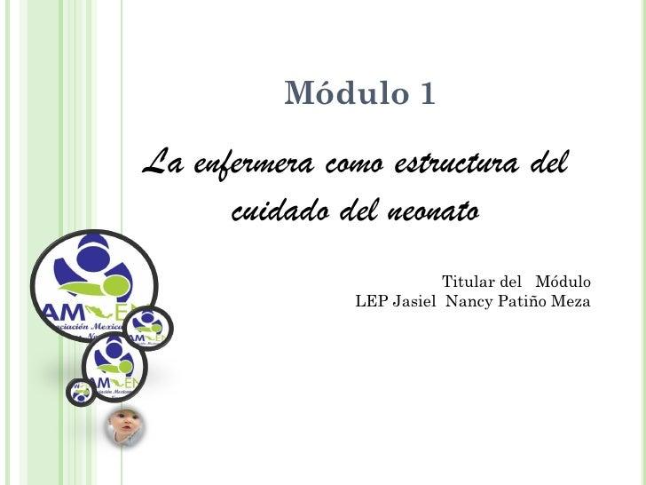 Módulo 1La enfermera como estructura del      cuidado del neonato                          Titular del Módulo             ...