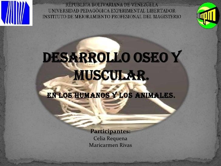 En los humanos y los animales.<br />DESARROLLO OSEO Y MUSCULAR.<br />Participantes:<br />Celia Requena<br />Maricarmen Riv...