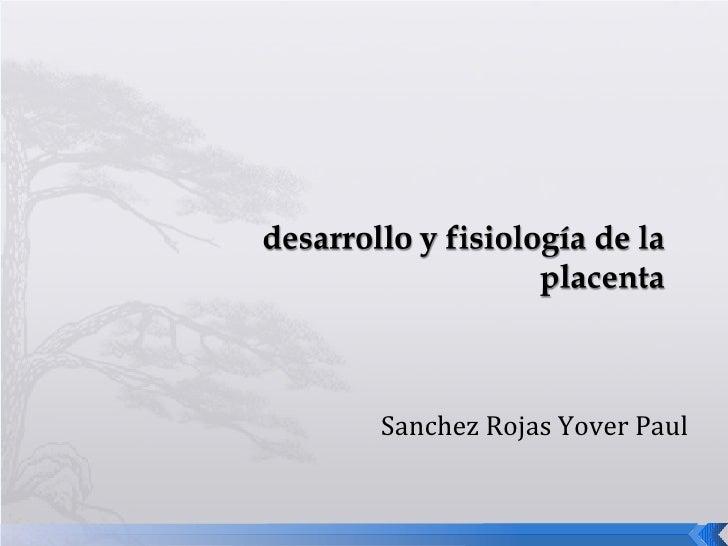 Sanchez Rojas Yover Paul