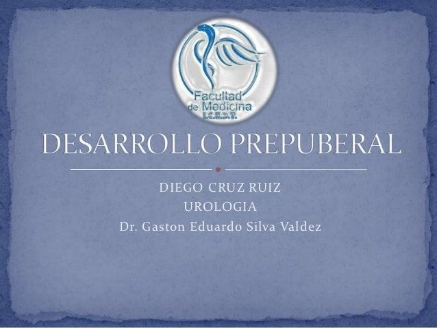 DIEGO CRUZ RUIZ          UROLOGIADr. Gaston Eduardo Silva Valdez